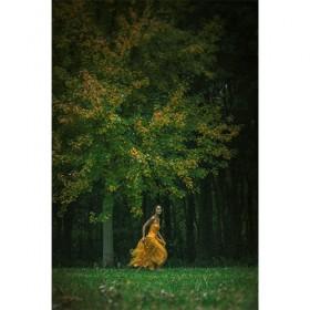 Luxe relatiegeschenken van Artihove - Photo art running - 019144MDEC